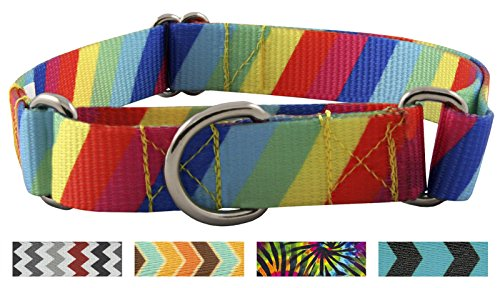 Country Brook Design Rainbow Stripes Martingale Dog Collar-L