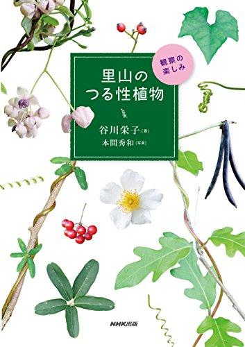 里山のつる性植物 観察の楽しみ