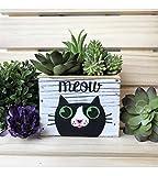 Meow Cat Planter Whitewashed Wood Box
