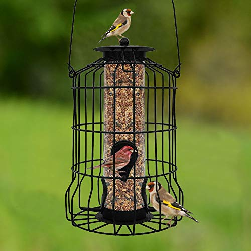 FORUP Caged Tube Feeder, Squirrel Proof Wild Bird Feeder, Outdoor Birdfeeder with Large Metal Seed Guard Deterrent for Large Birds ()