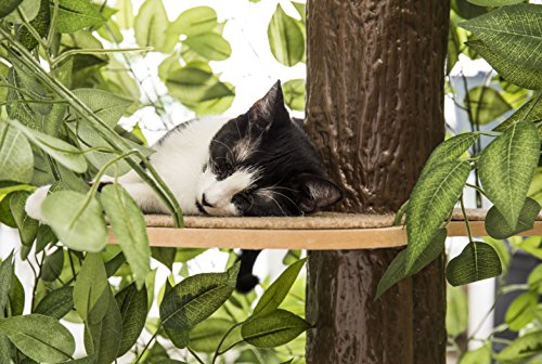 CatHaven Cat Condo Furniture, Tree House Tower for Climbing, Playing, Scratching, and Relaxing – 60 in. high