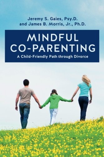 Mindful Co-parenting: A Child-Friendly Path through Divorce