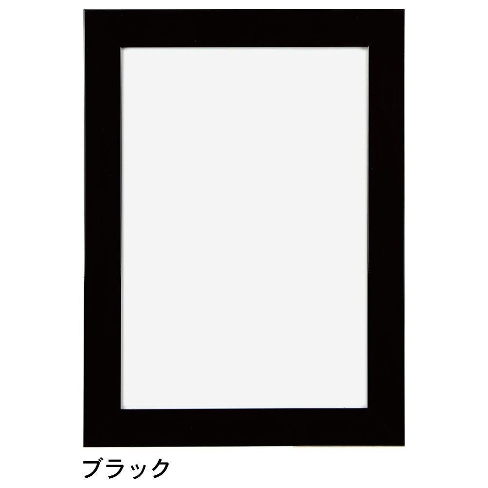 APJ パネル フラットパネル B1 728×1030mm ブラック 0021761642 B00870N7PK ブラック ブラック