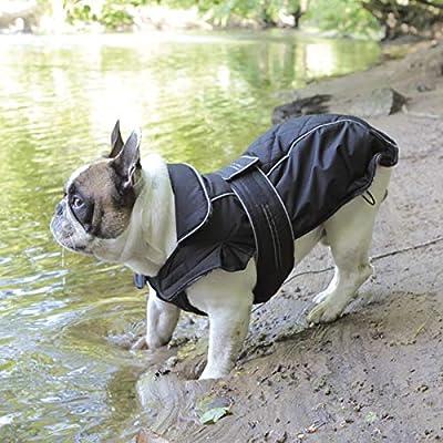 Trixie Capa Rouen, 52 cm, Negro, M: Amazon.es: Productos para mascotas