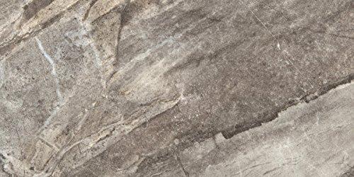 """Emser Tile F02EURAGR1224 """"Eurasia"""" Porcelain Tile, 12"""" x 24"""", Grigio"""