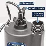 Superior Pump 91012 12 Volt Utility Pump with
