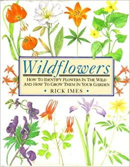 Wildflowers how to identify flowers in the wild and how to grow wildflowers how to identify flowers in the wild and how to grow them in your garden rick imes 9780875961187 amazon books mightylinksfo