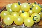 30+ ORGANICALLY GROWN Snow White Cherry Tomato Seeds, Heirloom NON-GMO, Super Sweet and Heavy-Yielding, Low Acid, Indeterminate, Open-Pollinated, Delicious, From USA