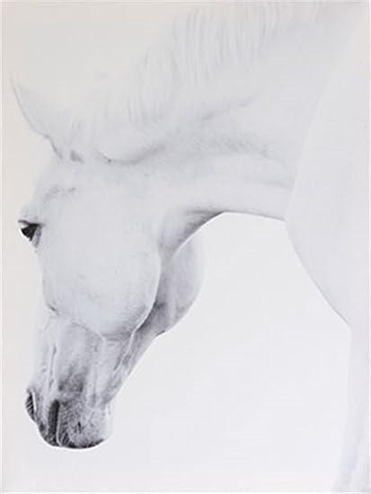 "Full Square Diamond 5D DIY Diamond Painting /""Horse /& Autumn Maple Grove/"" Embroid"