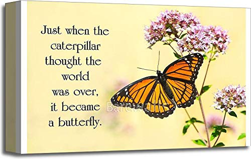 Barewalls Inspirational Quote on Life by an Unknown Author with a Pretty Monarch Butterfly Perched at a Flower. Gallery Wrapped Canvas Art (12in. x 18in.)