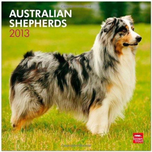 Australian Shepherds 2013 Square 12X12 Wall (Multilingual Edition) pdf epub