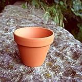 Piccoli vasi in terracotta per piante (confezione da 10) diametro 80 mm x altezza 70 mm
