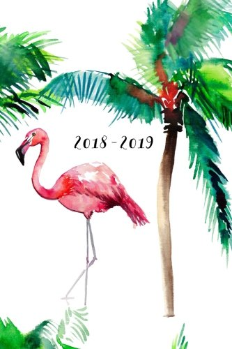 2018 - 2019, 18 Month Weekly & Monthly Planner Watercolor Flamingo, Daily, Weekly, Monthly, January 2018 - June 2019 [Creative Notebooks] (Tapa Blanda)