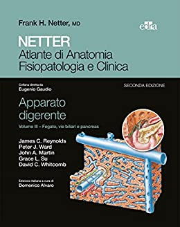 Pancreas Anatomia Y Fisiologia Ebook