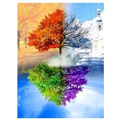 Crafts Graphy Paint with Diamonds Kits for Adults Full Drill - Season Trees, 16 x 20 Inches