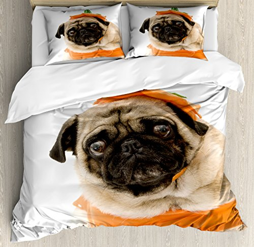 Single Girl Halloween Costume Ideas (Pumpkin Queen Size Duvet Cover Set by Lunarable, Pug with a Pumpkin Costume for Halloween Trick or Treat Cute Animals Photo, Decorative 3 Piece Bedding Set with 2 Pillow Shams, Ivory Orange Black)