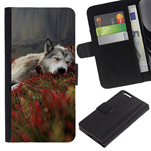 EuroCase - Apple Iphone 6 PLUS 5.5 - Gray Wolf In Fields - Cuir PU Coverture Shell Armure Coque Coq Cas Etui Housse Case Cover