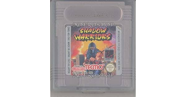 Amazon.com: Ninja Gaiden Shadow: Video Games