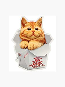 Chinese Food Cat Sticker - Sticker Graphic - Auto, Wall, Laptop, Cell, Truck Sticker for Windows, Cars, Trucks