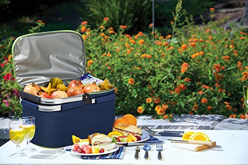 Family Size Insulated Folding Collapsible Picnic Basket Cooler with Sewn in Frame