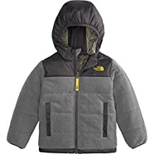 The North Face Little Boys' Toddler Reversible True or False Jacket (Sizes 2T - 4T)