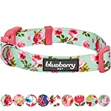 Blueberry Pet 8 Patterns Spring Scent Inspired Floral Rose Print Turquoise Dog Collar, Medium, Neck 14.5''-20'', Adjustable Collars for Dogs
