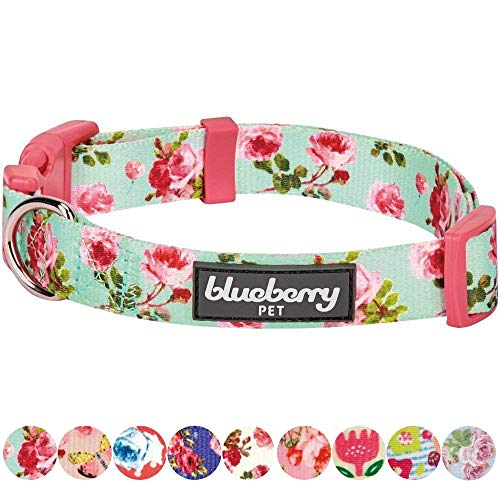 Charming Dog Print (Blueberry Pet 8 Patterns Spring Scent Inspired Floral Rose Print Turquoise Dog Collar, Small, Neck 12