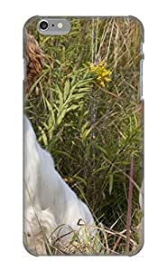 Eqgtru-4992-swiftkv Joanward Animal Spaniel Dog Animal Feeling Iphone 6 Plus On Your Style Birthday Gift Cover Case