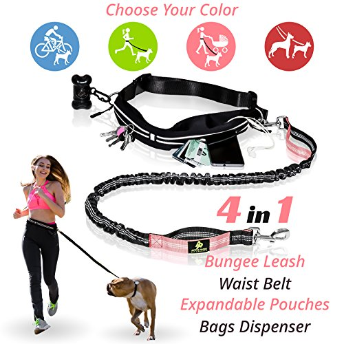 PREMIUM Hands Free Dog Leash | Bungee Dog Leash for Walking & Running with Small, Medium or Large Dogs | Reflective Waist Belt for Phone, Keys and Cards |BONUS Collar Bag Dispenser | Great GIFT (PINK) - 2 Retractable Cord Leash