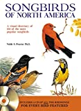 Songbirds of North America: A visual directory of 100 of the most popular songbirds in North America