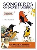 Songbirds of North America: A visual directory of 100 of the most popular songbirds in North America