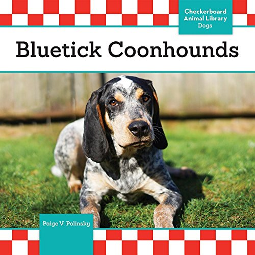 Bluetick Coonhounds (Dogs) (Bluetick Coonhound Dogs)