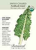 Fordhook Giant Swiss Chard Seeds - 2 grams - Organic
