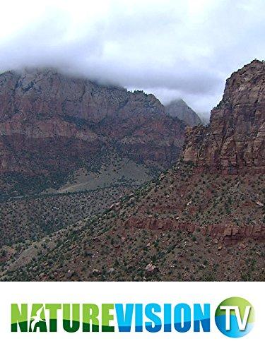 mystic-canyons