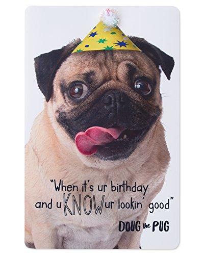American Greetings Doug the Pug Birthday Card with Foil - Happy Birthday Pug