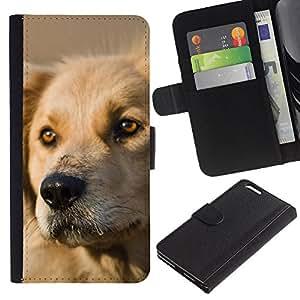 Be Good Phone Accessory // Caso del tirón Billetera de Cuero Titular de la tarjeta Carcasa Funda de Protección para Apple Iphone 6 PLUS 5.5 // Labrador Retriever Dog Golden Canine Pet