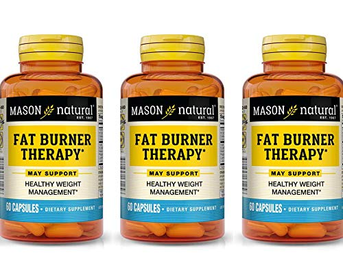 Mason Natural Fat Burner with Chromium Picolinate, L-Canitine and Iron 60 Capsules per Bottle Pack of 3 Bottles