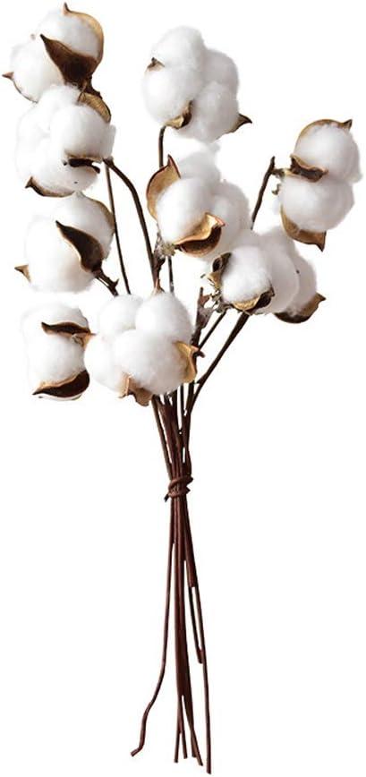 RENNICOCO Tallos de algodón Realmente Naturales Ramas de Flores ...