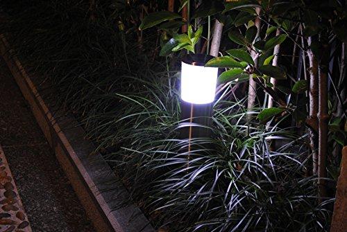 Fusion Solar Garden Lights