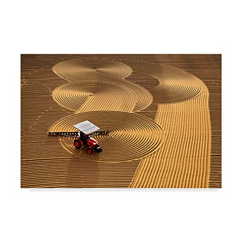 Farm Lines by Nese Ari, 12x19-Inch