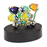 Magnetic Sculpture – Tropical Fish