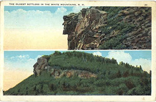 The Oldest Settlers In The White Mountains White Mountains, New Hampshire Original Vintage - New Hampshire Settlers