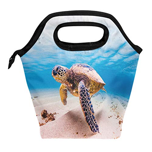 Wamika Kids Lunch Bag Sea Turtles Under Water Shell Lunch Bag Box Insulated for School Children Students Girls Boys,Summer Ocean Turtles Beach Starfish Coral Lunch Box Bag for Women Men -