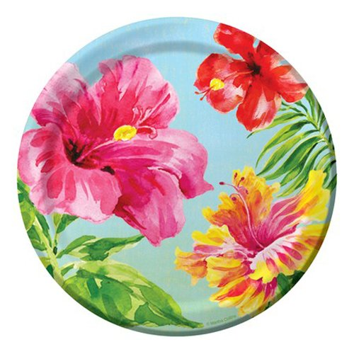 (Creative Converting 18 Count Paper Dessert Plates, Heavenly Hibiscus)