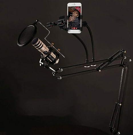 WXQP Soporte de micrófono de Escritorio, con Base de Metal, Filtro ...