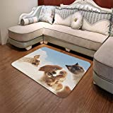 YOLIYANA Ultra-Soft Mat,Funny,for Kitchen Living Room,55.12'' x78.74'',Cat and Dogs Domestic Home Pets