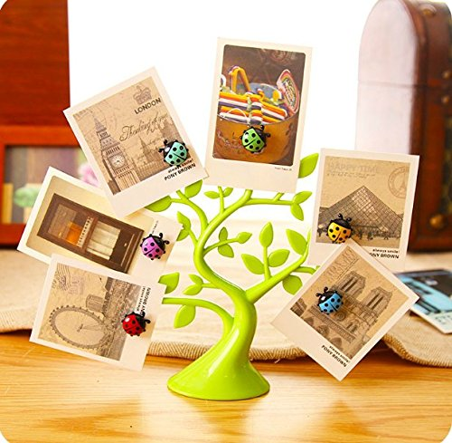 Chris.W 1Pc Creative Adorable Tree Shape Ladybug Magnet Tabletop Memo Clip Holder Display for Cards/Notes/Photos/Pictures/Placecards, Green