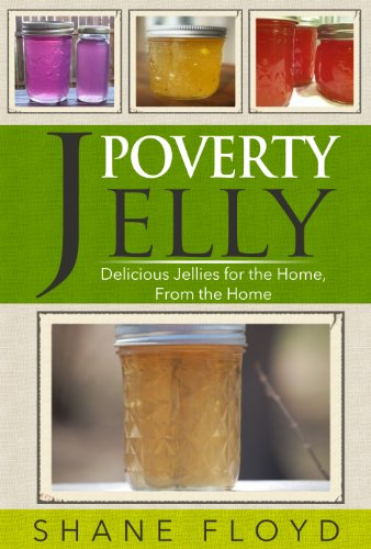 Poverty Jelly: Delicious jellies for the Home, from the Home by Shane Floyd