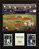 MLB Tropicana Field Stadium Plaque