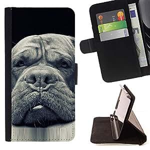Momo Phone Case / Flip Funda de Cuero Case Cover - Plott Terranova Perro Negro; - Samsung ALPHA G850